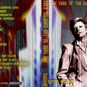David Bowie - 1974 (David Bowie the year of the Diamond Dogs) DVD