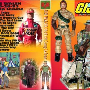 Joe Walsh 1993-08-28 Camp LeJune, Jacksonville, NC DVD